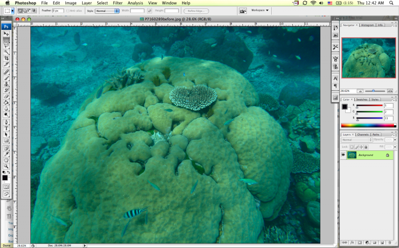 editing underwater photos