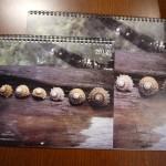 Calendar Review