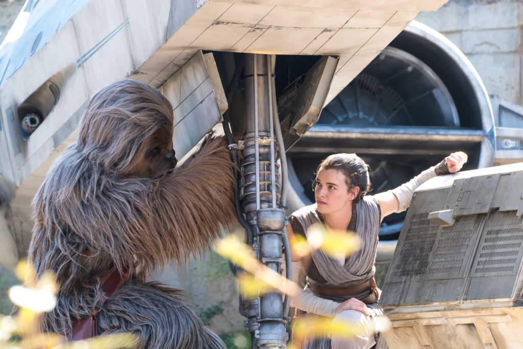 Rey and Chewie