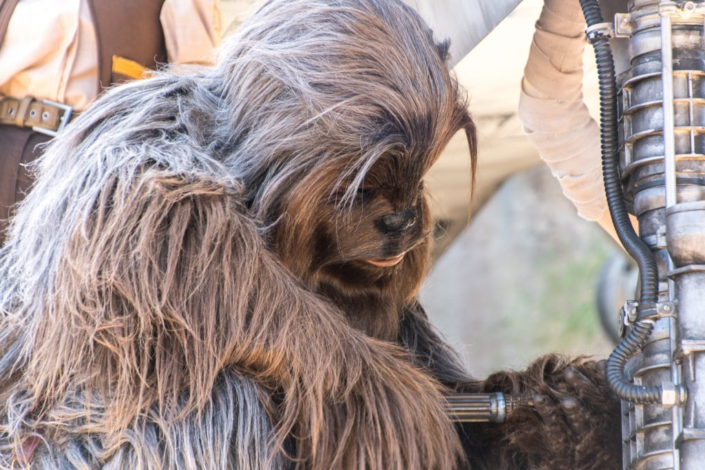 Chewbacca at Galaxy's Edge Disneyland
